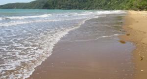 Oz beach c